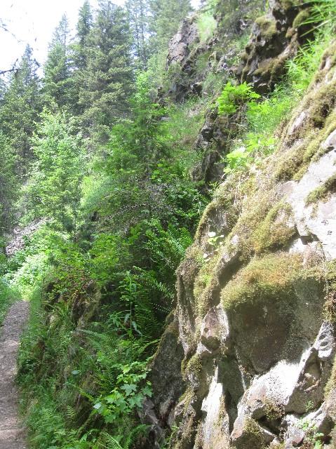 Pulaski trail 5