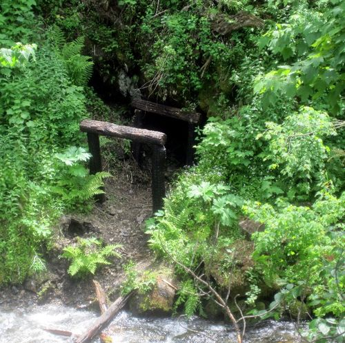 Pulaski trail 9