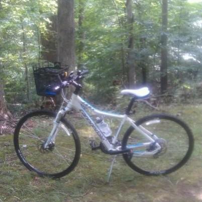 New bike Large Web view